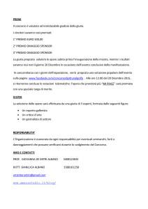 BANDO CONCORSO PREMIO IL GOLFO aggiornato-3